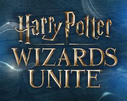 Un Harry Potter Go en préparation !