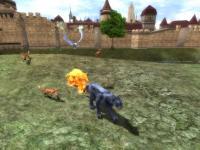 capture du jeu : Last Chaos_3
