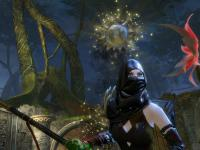capture du jeu : Guild Wars 2_4