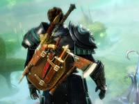 capture du jeu : Guild Wars 2_8