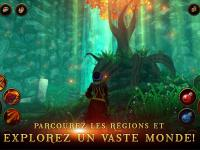 capture du jeu : Villagers & Heroes_11